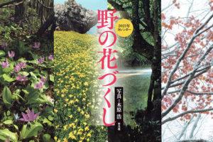 野の花づくし 木原浩
