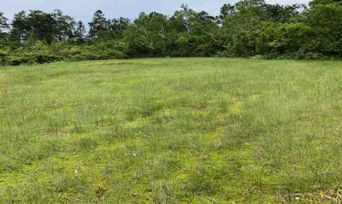 小松原湿原