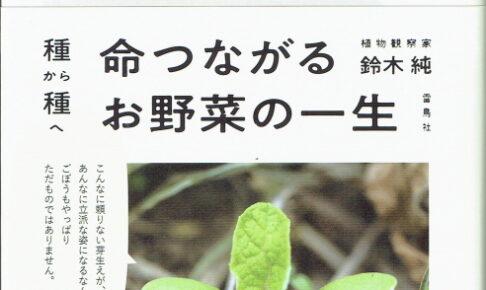 命つながるお野菜の一生